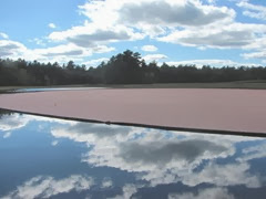 cranberry harvest cloud reflection on water 9.2013