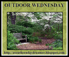 Outdoor Wednesday logo_thumb[1]