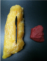 5lbs fat vs. 5lbs muscle (Found on Healthcurvyfitgirl.tumblr.com)