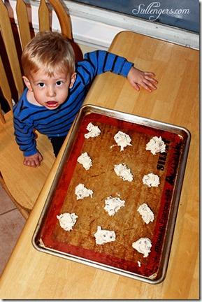 cookie monster 5