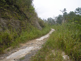 The track between Loksado and Kadayang village on the way to Gunung Besar (Daniel Quinn, October 2011)