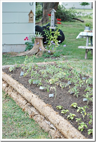 raised cedar log garden beds