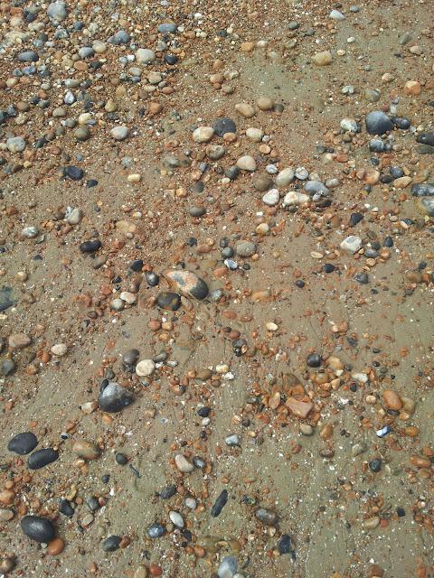 Pebbled beach Brighton Hove