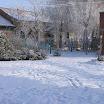 снежная зима 08-09 года (10).JPG