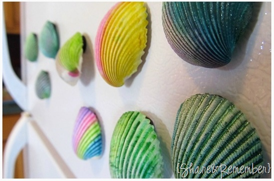 Painted Seashell Magents 5