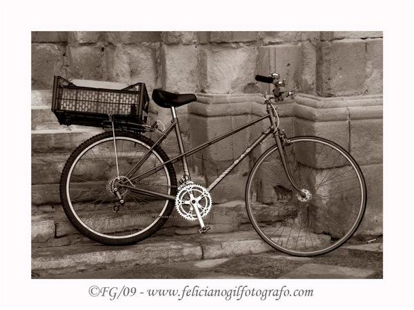 Bicicleta  Large