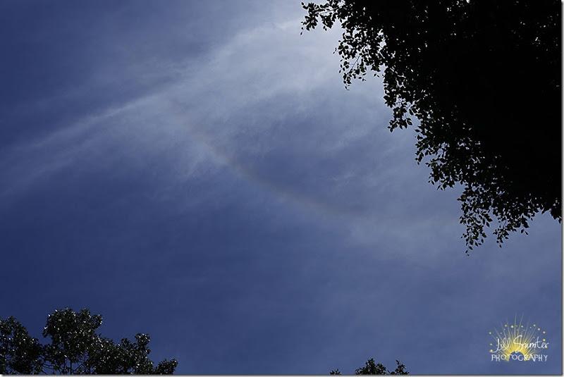 rainbow_0192
