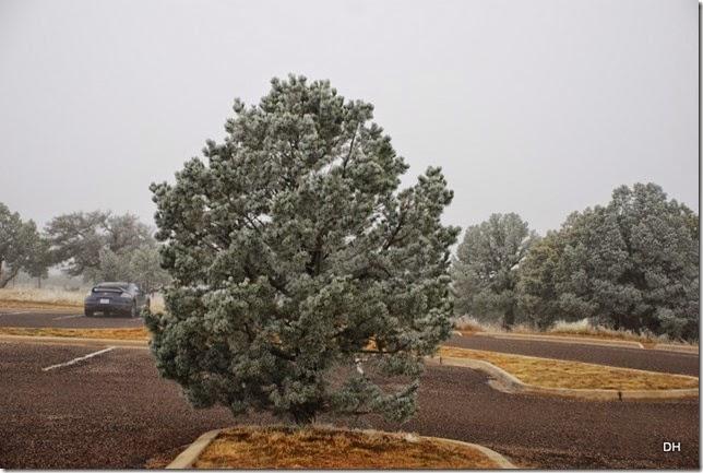 02-17-15 McDonald Observatory Fort Davis (3)