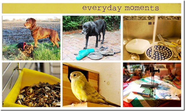 1-every-day-moments