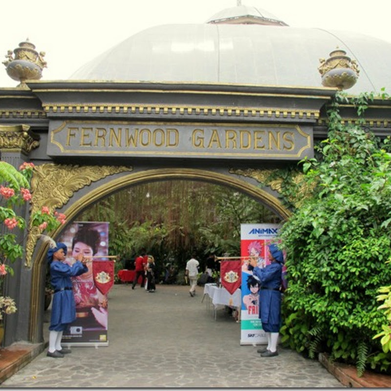 Fantasy Quest 2012 (Manila)