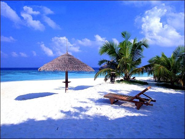 جلسة علي الشاطئ