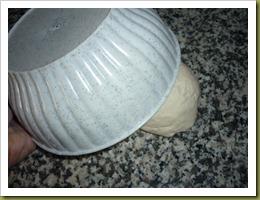 Rinfresco della pasta madre (6)
