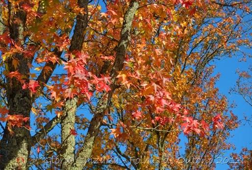 Glória Ishizaka - Outono 2013 - 55