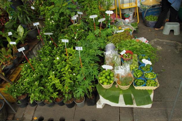 Thai Herbs on sale at Taling Chan Floating Market, Bangkok