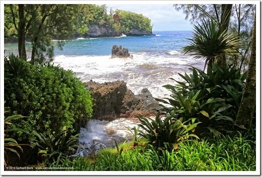 140728_HawaiiTropicalBotanicalGarden_0060
