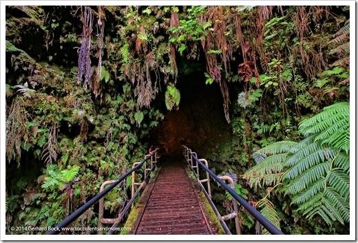 140724_HawaiiVolcanoesNP_0179