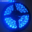 Blue-Color-Flexible-LED-Strip-60-SMD-3528-leds-per-meter-waterproof-IP65--.jpg