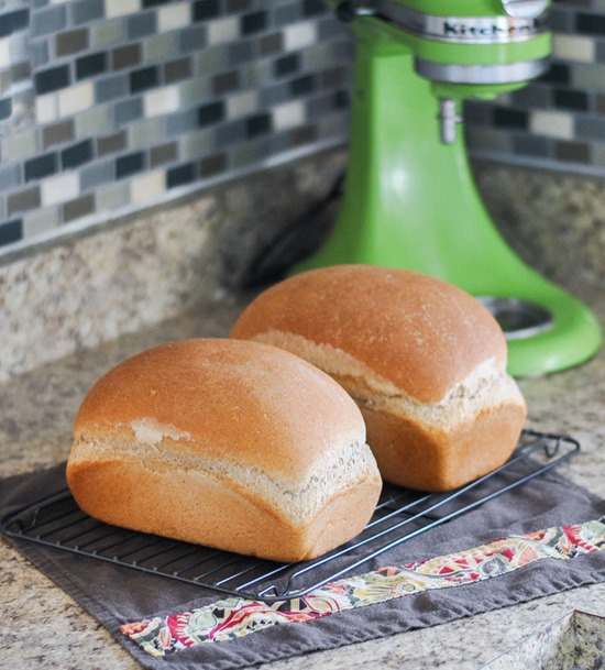 My favorite homemade wheat bread recipe--great for sandwiches and spreads!