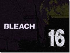 Bleach 16 Title