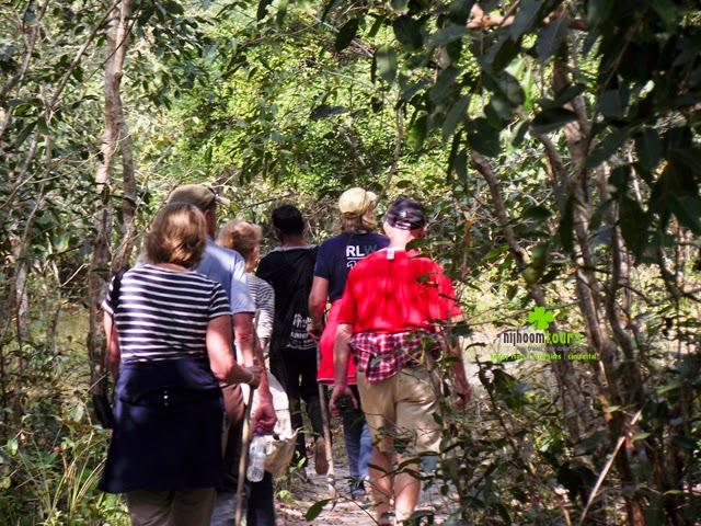 Hiking inside Sundarbans