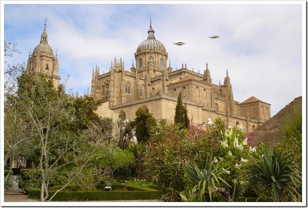 catedral nueva y vieja desde Calixto y Melibea