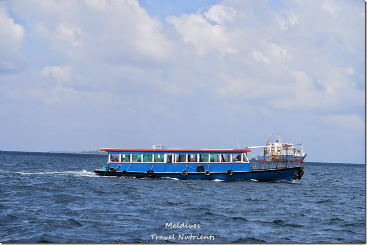 馬爾地夫 交通渡輪計程車飛機公車 (13)