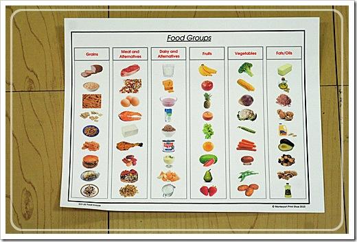 foodgroupsorting1