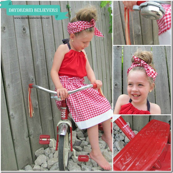 classic american style gingham red and white