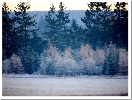 16 Jan 1 16-01-2012 16-43-26