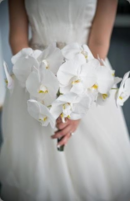 phal Bridal-Bouquet blush floral design robert norman photo