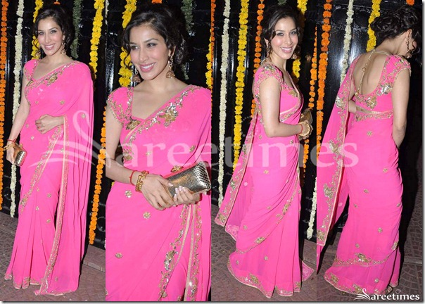 Sophie_Chaudhary_Pink_Saree
