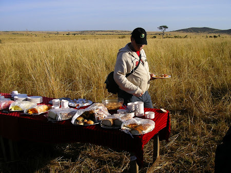 Safari: breakfast in the bush