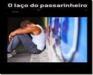 O_LACO_DO_PASSARINHEIRO_1310445848P