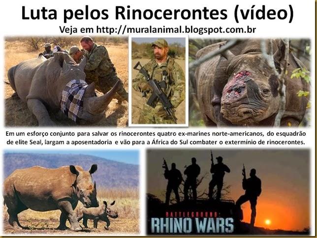 Luta pelos Rinocerontes (vídeo)