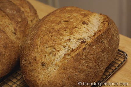 five-grain-rye-sourdough_1315