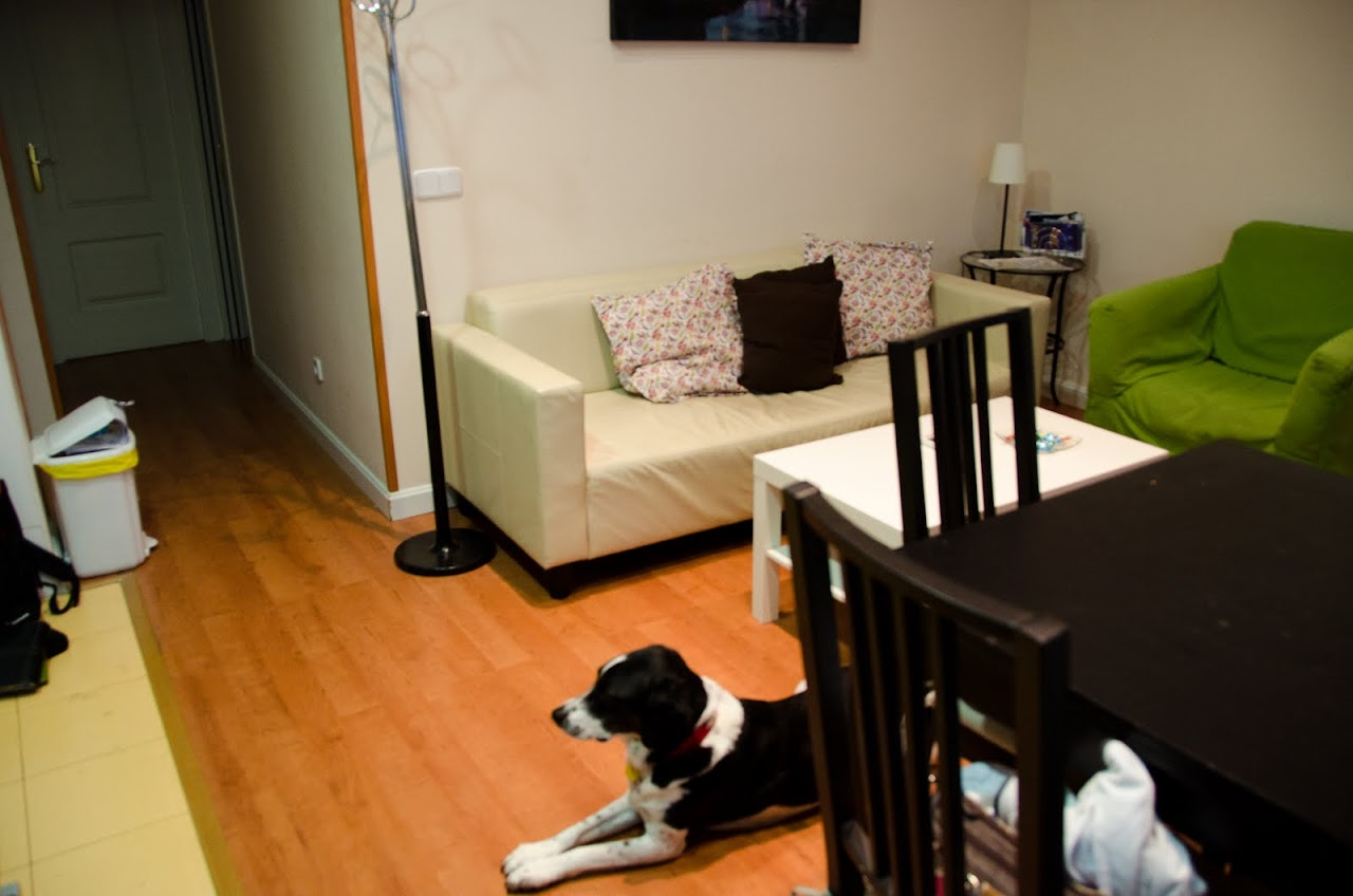 Madrid Pet-Friendly Vacation Rental
