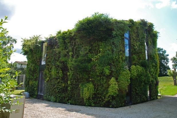 vertical garden by patrick blanc 7