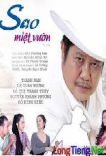 Sao Miệt Vườn - Phim Việt Nam