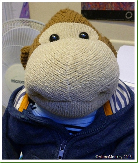 harvey monkey