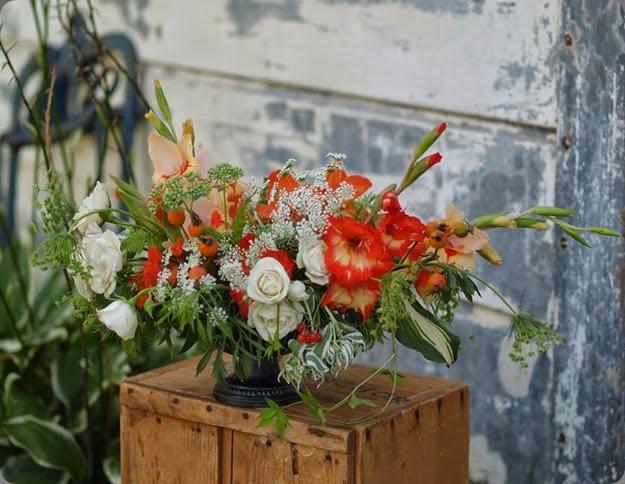 glads 1230047_10152136498348362_528910725_n alluring blooms