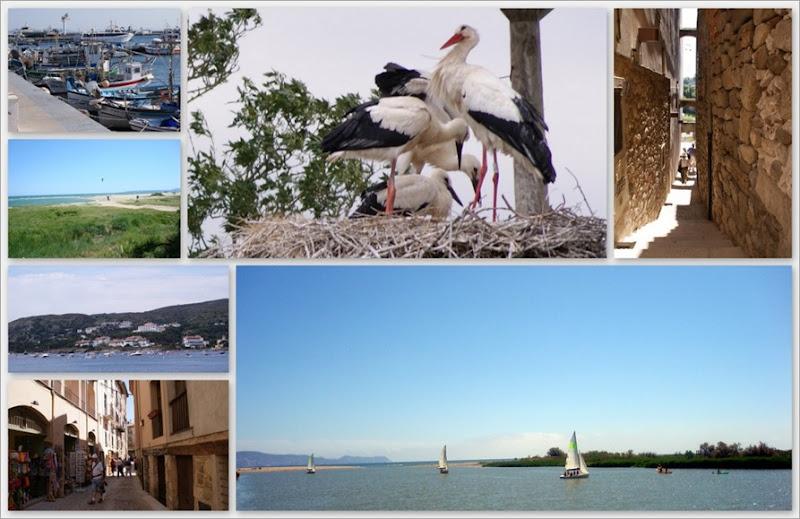 8-voorjaar 2011 Spanje9
