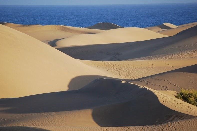 dunes-of-maspalomas-5