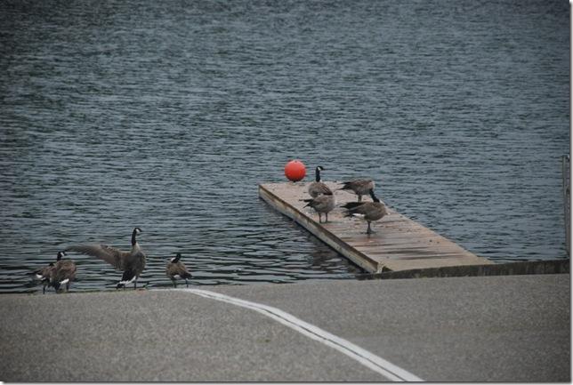 09-08-11 B Lake Grayson 018