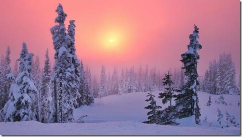 imagini iarna-brazi