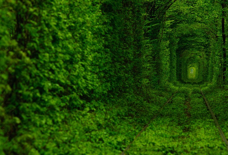 tunnel-of-love-3