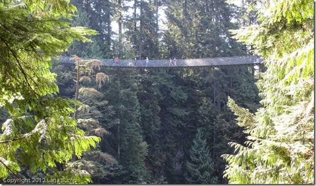 Capilano Suspension Bridge, Victoria, Canada