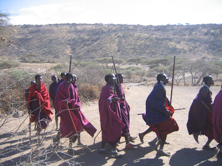 African Safari: Masai dance