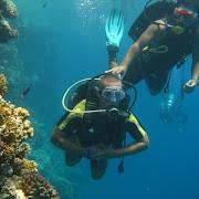 nurkowanie 1.jpg