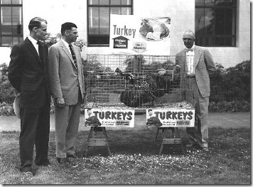 Turkey Promo at Capitol