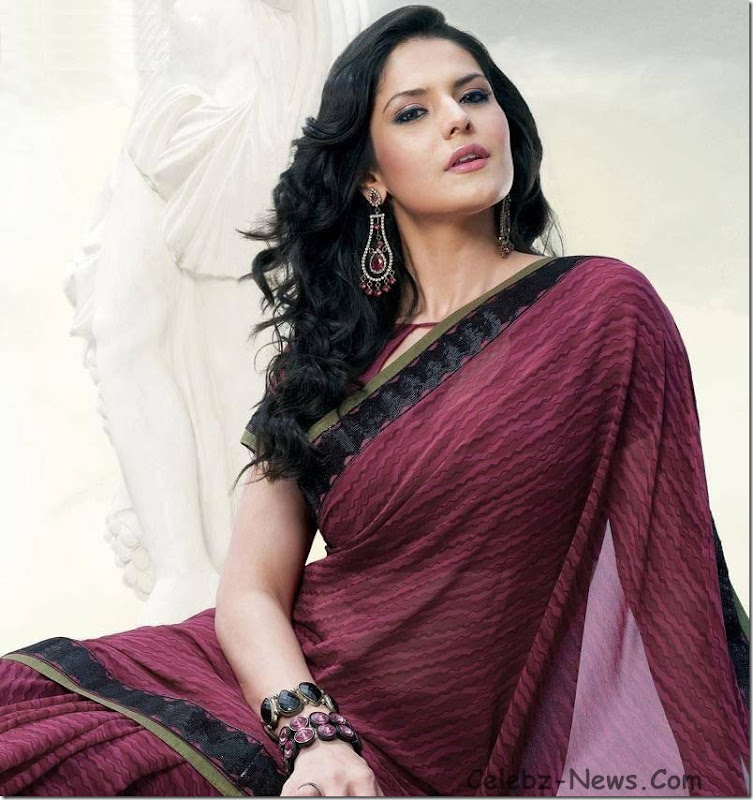 zarine-khan-saree-4